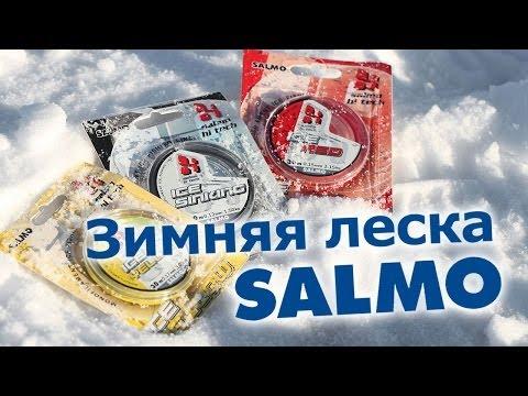 видео: Зимняя леска salmo