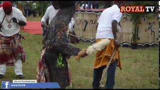 2016 New Yam Festival in Mbaise, Imo state