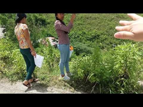 Psalm property venture Jordan  heights subdivision barangay  tulo-tulo  consolacion