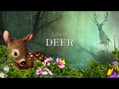 Life Of Deer game Playing Video
