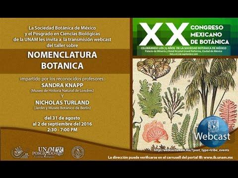 curso-de-nomenclatura-botánica-ii.-sandra-knapp-y-nicholas-turland