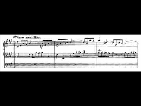 J.S. Bach - BWV 656 - O Lamm Gottes unschuldig