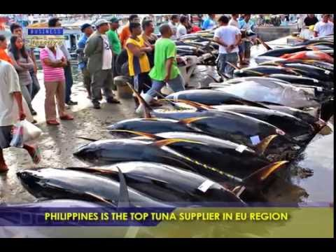 Philippines Is The Top Tuna Supplier In EU Region  - Bizwatch