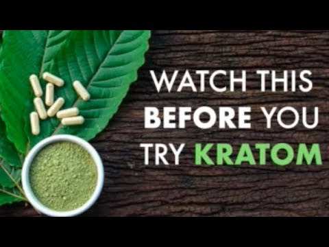 Watch This BEFORE You Try Kratom