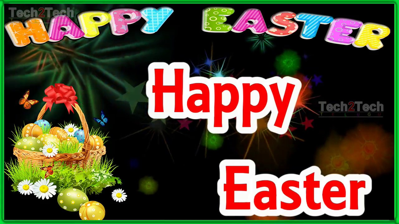 Happy easter sunday wishesgreetingswhatsaap quotesmessage happy easter sunday wishesgreetingswhatsaap quotesmessagevideos e cardwallpapersprayers kristyandbryce Choice Image