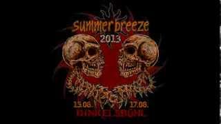 Summer Breeze 2013 Teaser