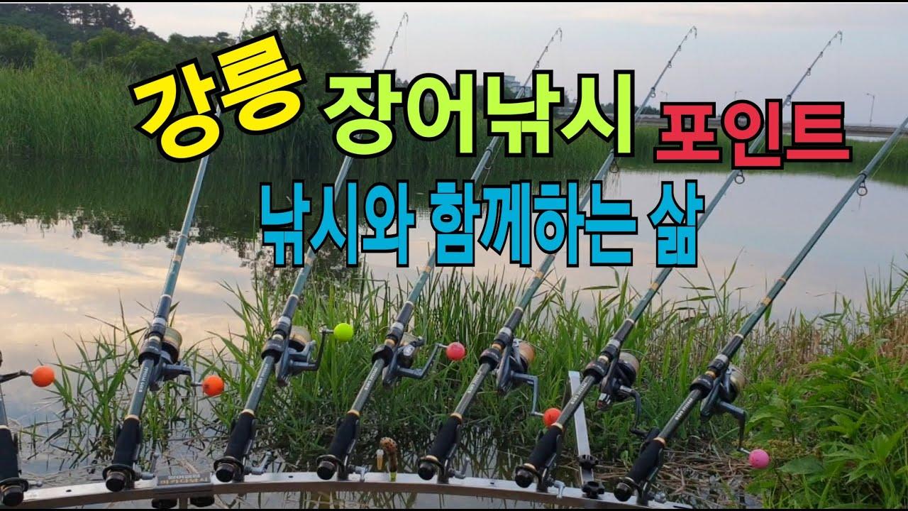 장어낚시와 함께하는 여행/강릉 장어낚시포인트/아들과함께