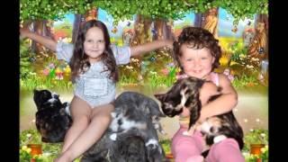видео Идеи выпускного в детском саду