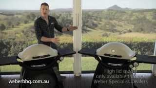 Which Weber® Q™ is right for you?