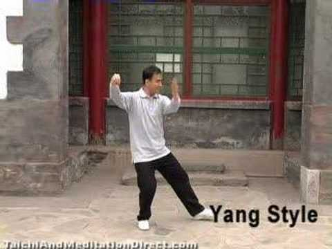 Comparison of Four Styles of Tai Chi