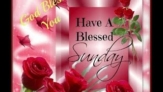 Happy Sunday Greetings Quotes Sms Wishes Saying E Card Wallpapers Whatsapp Video