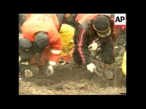 Chinese crash investigation chief visits crash scene; relatives interviewed