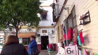 スペイン旅行No15 セビージャ旧市街散策
