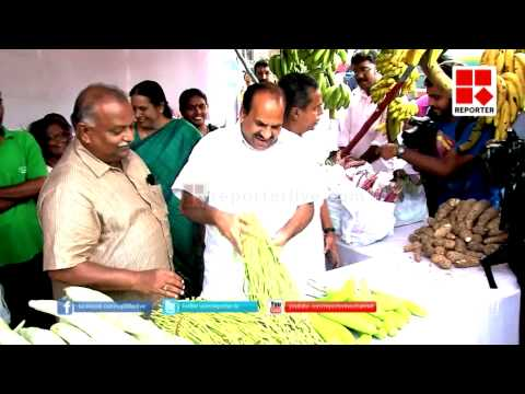 Organic Food Market of CPIM