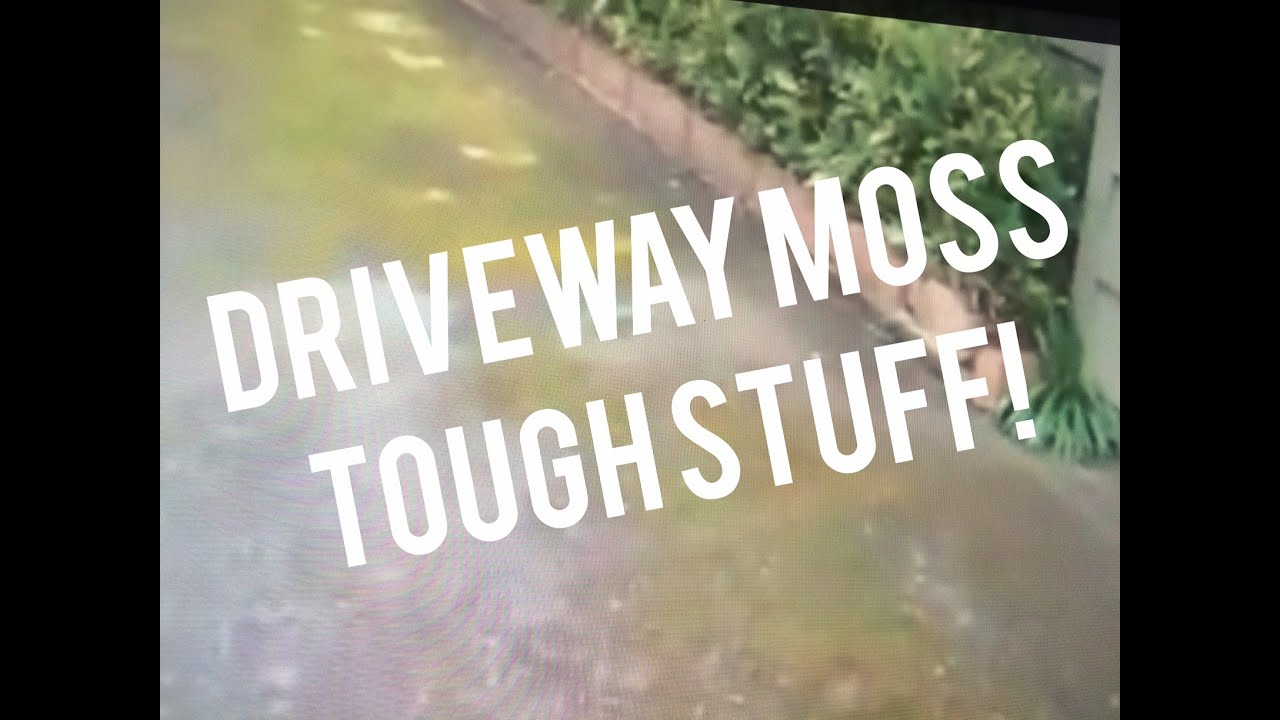 Driveway Moss Removal Control Cleaner, Spray U0026 Forget 3 1 Mix