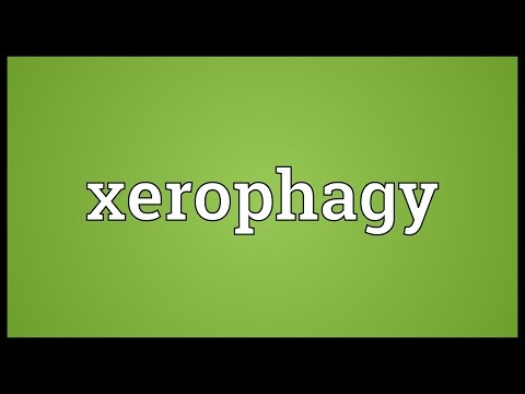 Header of xerophagy