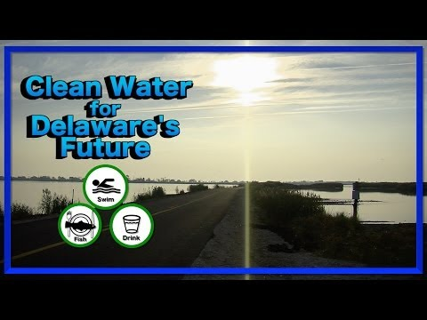 Clean Water for Delaware's Future