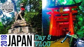 JAPAN VLOG Day 5 - How to catch the train, where to get bike bag, Fushimi Inari Shrine, drone