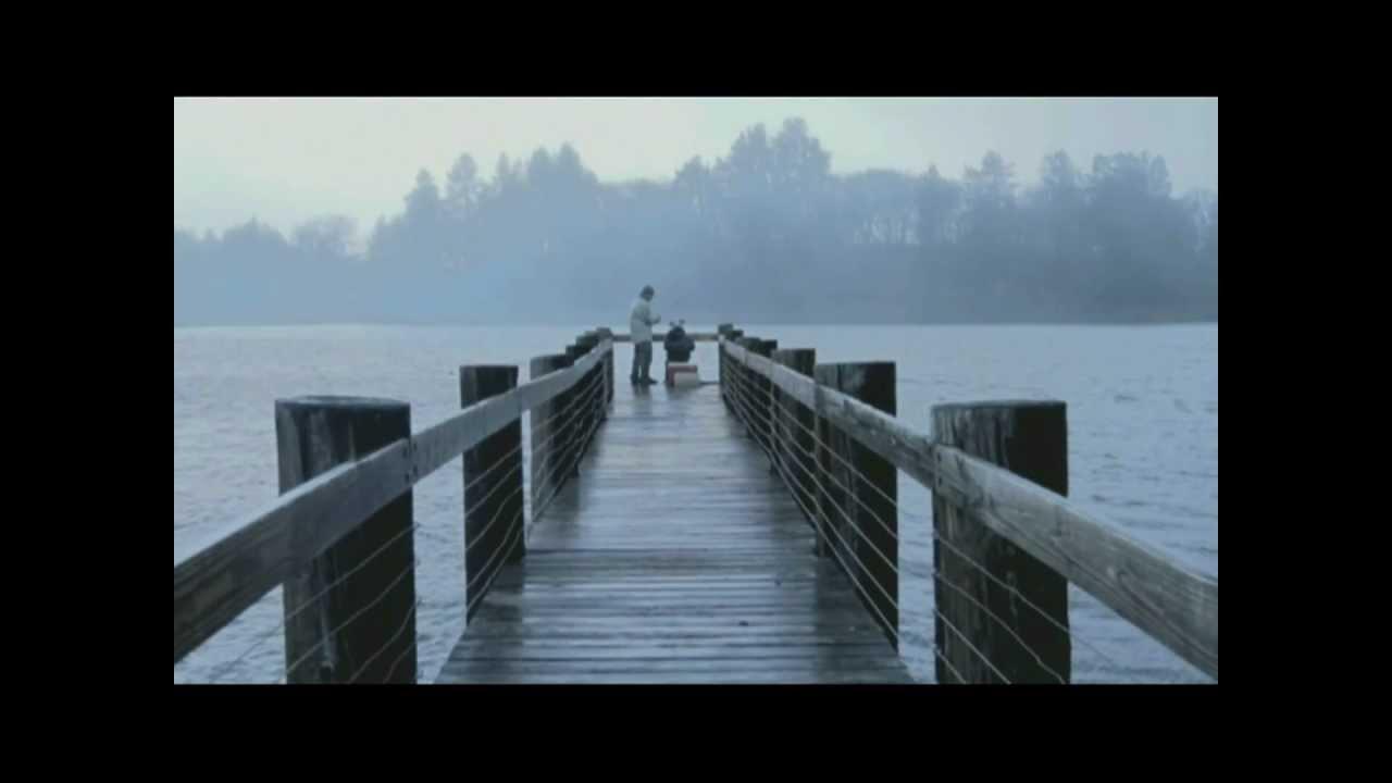 Bowerbirds -