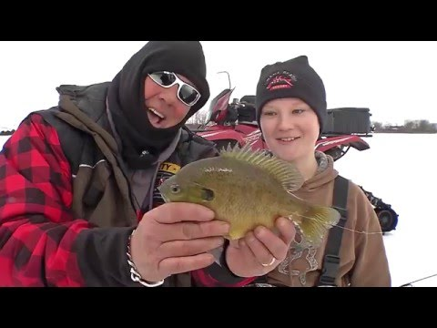 09_2016 Iowa Farm Ponds Bluegills -Preview-