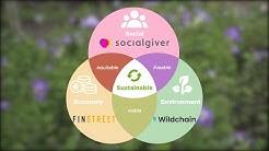 STEAM Platform Sustainability Business Features 2020: Start-ups Towards Sustainability