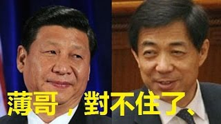 【中國秘聞】習近平薄熙來真實關係曝光、習總從小敬畏熙來、沒想到鹹魚翻身、 thumbnail