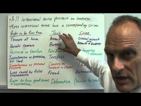 chapter 3 introduction to torts Group 3 – main types of torts: negligence and malpractice  getting an overview  of the case, explaining circumstances and structure of the interview 2.