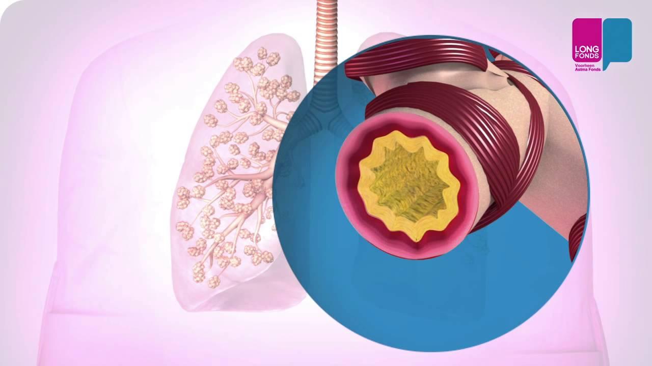 Akciğer Ilaçları Ne Işe Yarar Youtube