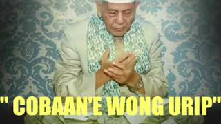 Video Kh sya'roni ahmadi al anbiya 34-40 download MP3, 3GP, MP4, WEBM, AVI, FLV Oktober 2018