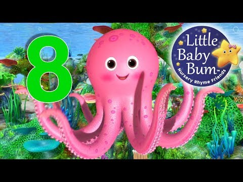 Numbers Song  Number 8  Nursery Rhymes  Original Songs  LittleBaBum!