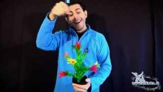 Fiorin fiorello - Deluxe - Giochi di prestigio By Mondomagia