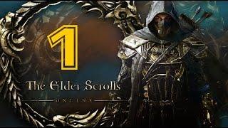 Прохождение The Elder Scrolls Online за КАДЖИТА ЛУЧНИКА #1 (Побег из ада)