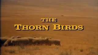 "Henry Mancini - ""The Thorn Birds"" Theme (가시나무 새) ...♪aaa (Instrumental) (HD)  [Keumchi - 韓]"