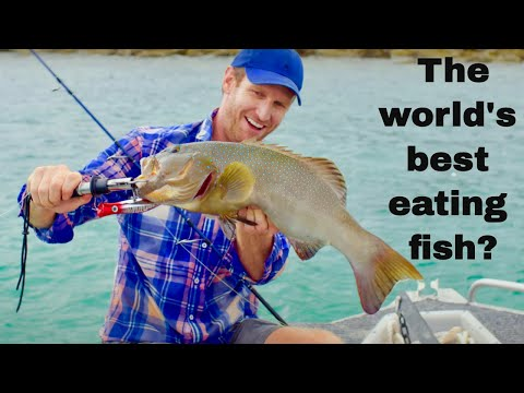 Ep.3 Coral Trout Fishing On Paradise Islands. Cooking Coral Trout Nuggets! (FISHING THE WILD NT)