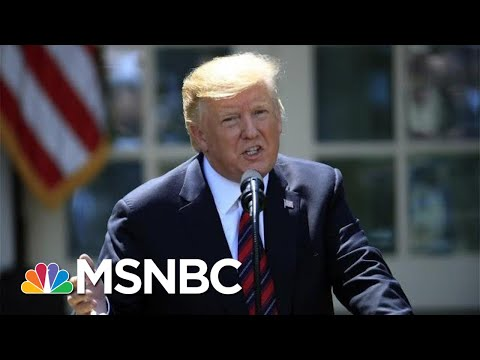 President Donald Trump Lays Out Merit-Based Immigration Plan Prioritizing Skilled Workers | MSNBC