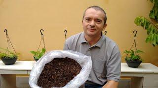 Como Fazer Substrato de Folhas Secas