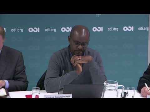 Sustaining pathways out of extreme poverty: Panel 1