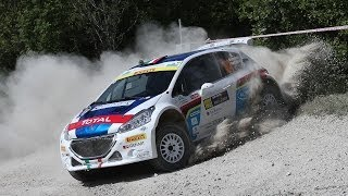 42° Rally San Marino 2014 - Pure Sound [HD]