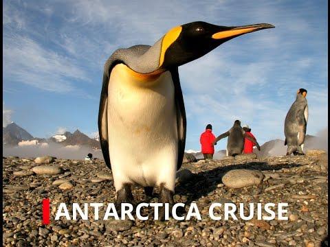 antarctic-highlights:-polar-expedition-cruises