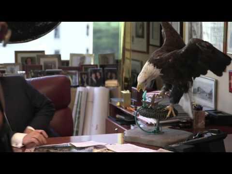 Donald Trump effrayé par un aigle