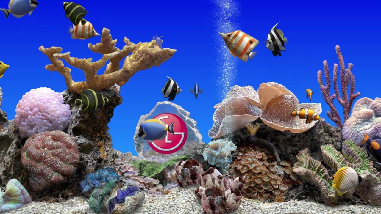 Aquarium Relax (LG Smart TV)