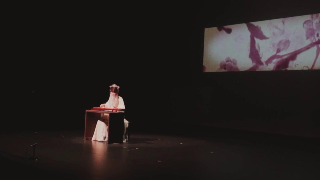 《敦煌之夜─韻弦再續》│南一先生《不染》 - YouTube