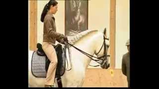 Elegant Dressage Training DVD 1 Englisch by Anja Beran