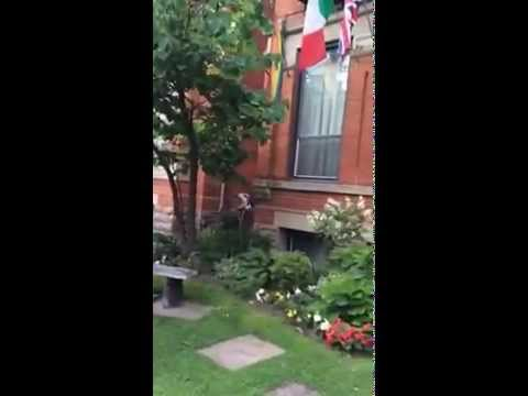 Victoria's Mansion Guest House, Toronto, garden