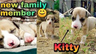 Kitty in musti !! humari Kitty…