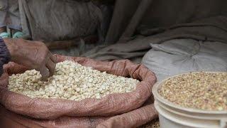 منطقة تيغراي نموذج للتحول الزراعي في اثيوبيا