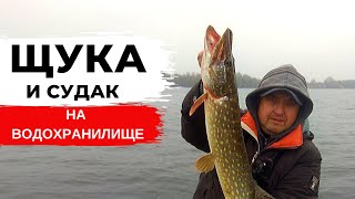 Рыбалка на ЩУКУ и СУДАКА на ВОДОХРАНИЛИЩЕ