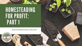 Homesteading for Profit:  Part 1