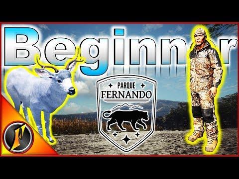 Beginner Series   Parque Fernando Special