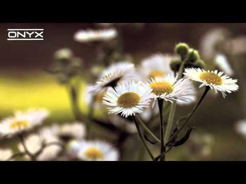 Ellie Goulding - Lights (Shook Mix)